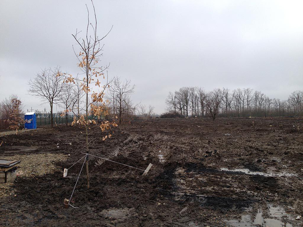 """Земельный участок 800 кв.м. в КП """"Николино Парк"""""""